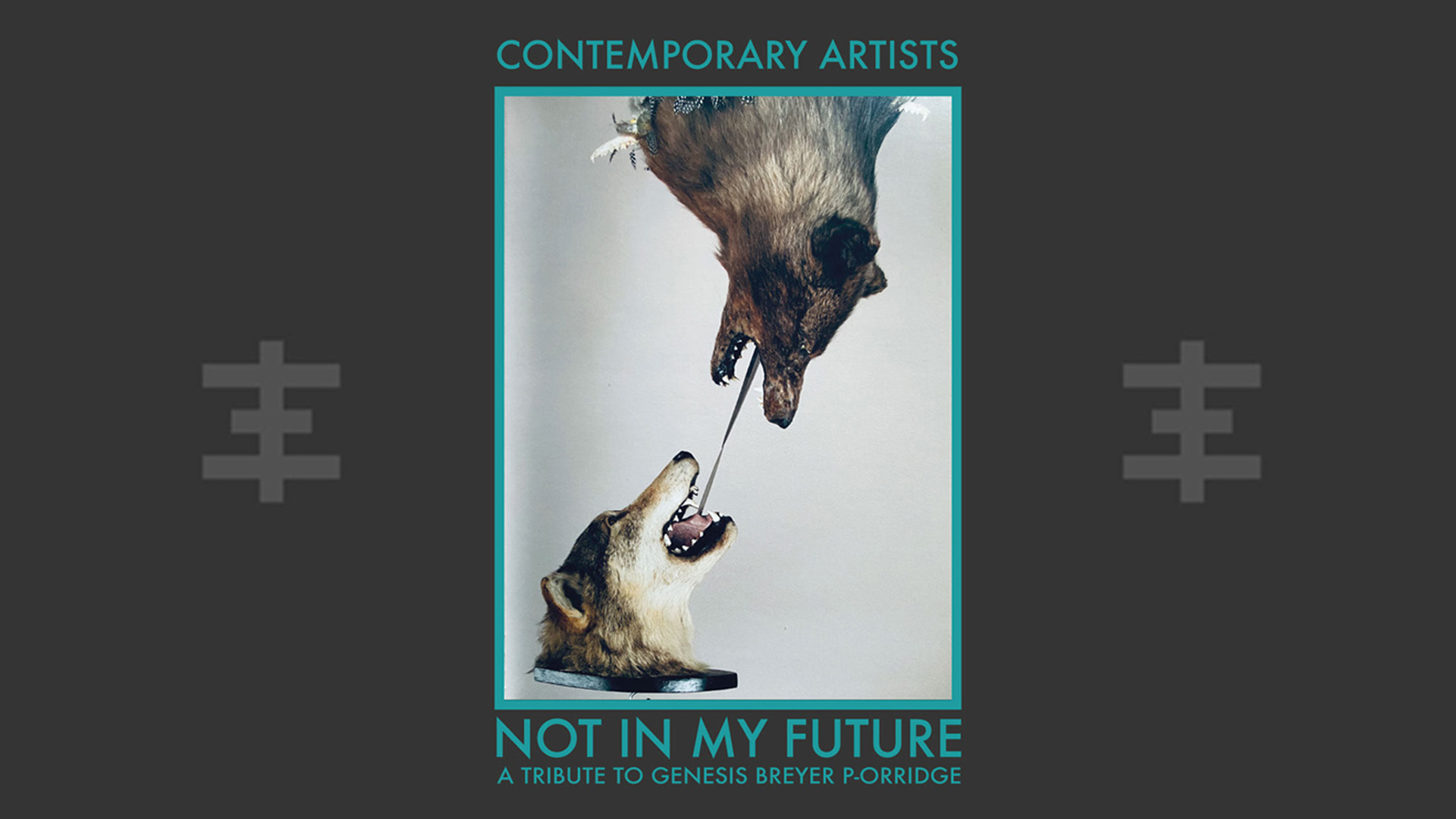"""Record compilation + book project """"NOT IN MY FUTURE: A Tribute to Genesis Breyer P-Orridge"""""""